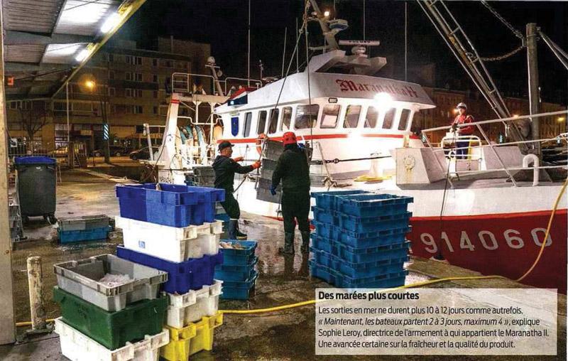"""La Normandie met en avant ses poissons """"Bon Plan"""""""